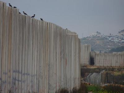 Ramallah - Muro03