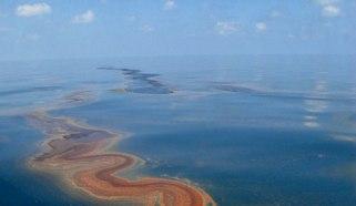 mehiski-zaliv
