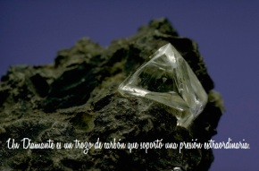 Diamante-Carbón FRASE
