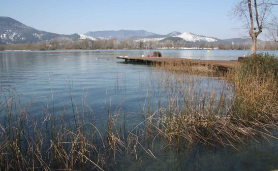 estany-banyoles-humides