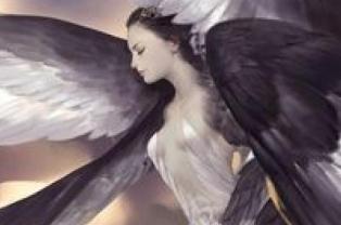 angelesydemonios