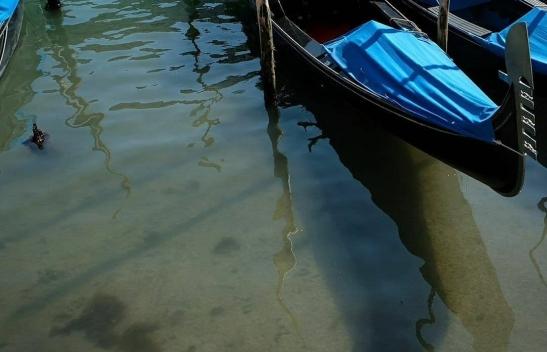 Los-canales-de-Venecia-vuelven-a-tener-aguas-cristalinas-Coronavirus_loqueva-11